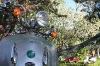 sisilisko-electric-vehicles-oy-sahkoskootterit-cemoto-city-cruiserit-6